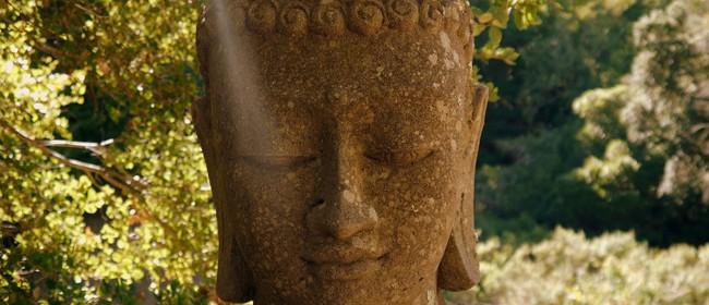 One-day Insight Meditation Workshop