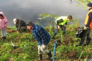 Whakatu Community Planting Day