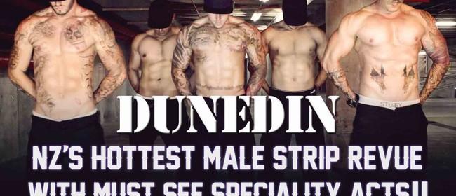 Wild Storm Male Strip Revue Dunedin