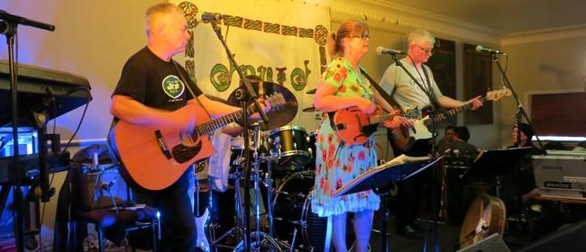 Druid Irish Band