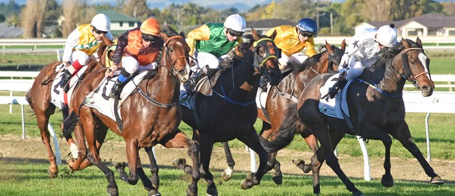 FJC- ANZAC Day Races