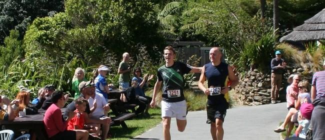Lochmara Lodge Half Marathon