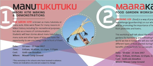 Manu Tukutuku - Māori Kite Making & Demonstration
