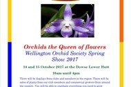 Orchids the Queen of Flowers