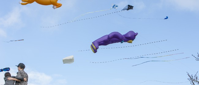 Out and About - Kite Day