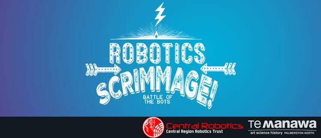 In the Zone - Vex Robotics Scrimmage