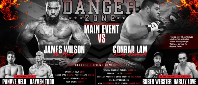 Danger Zone Professional Heavyweight Boxing