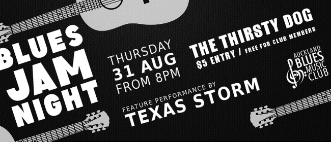 Blues Jam: Texas Storm