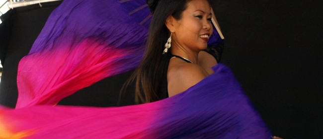 Multi Ethnic Extravaganza at Taranaki Art Festival 2017: SOLD OUT
