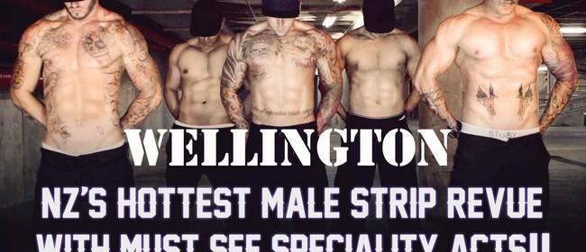 Wild Storm Male Strip Revue
