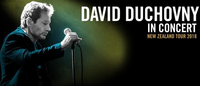 David Duchovny In Concert