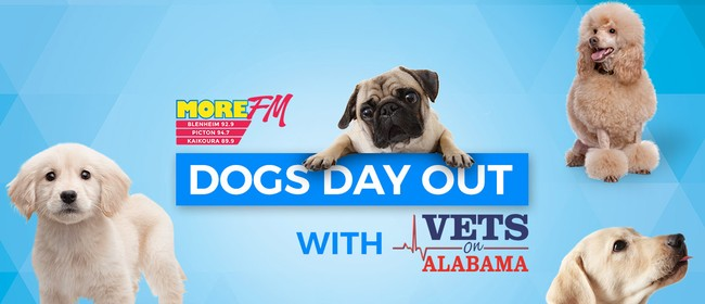 More FM Dogs Day Out With Vets On Alabama