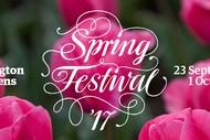 Spring Festival Walk – Spring Festival