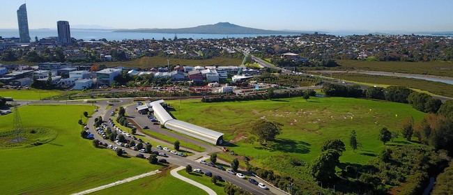 Golf Warehouse & Driving Range - Takapuna