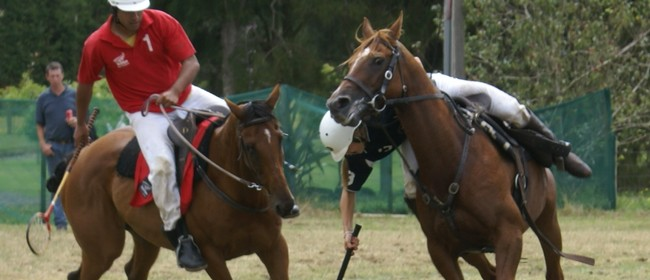 Counties Polocrosse Club Inc