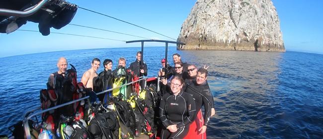 Auckland Scuba Divers