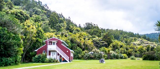 Piha Mill Camp